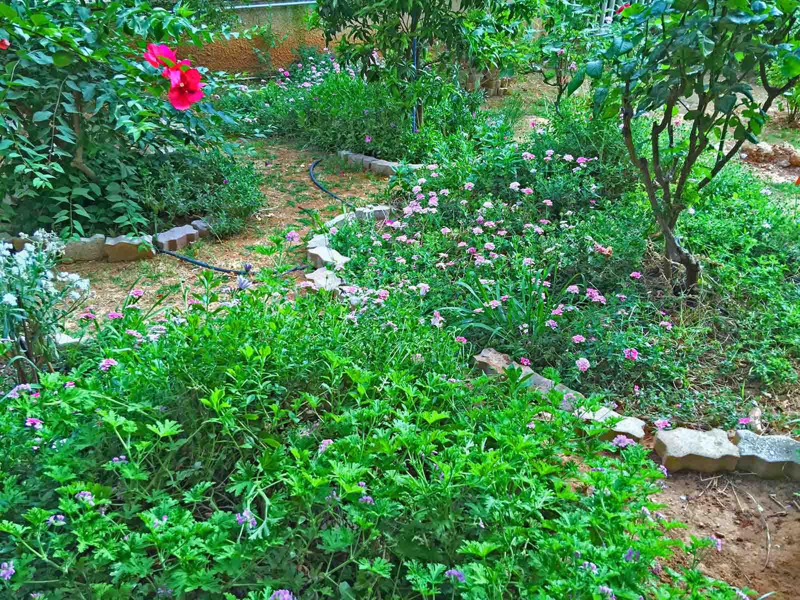 Κατασκευή κήπου σε κοινόχρηστους χώρους
